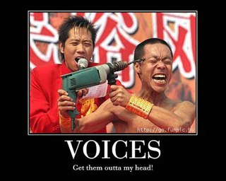 voices in my head: